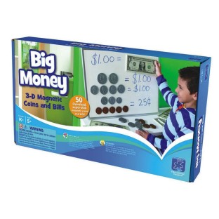 BIG MONEY MAGNETIC COINS