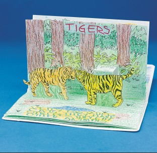 ZOO ANIMALS POPUP BOOKS PK6