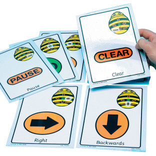 Giant Bee-Bot Sequence Cards