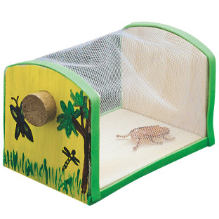 Great for nature projects and camps!