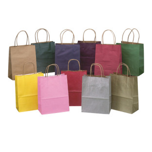 Kraft Cub Gift Bags Assorted Colors
