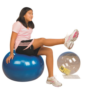 EXERBALL EXERCISE BALL
