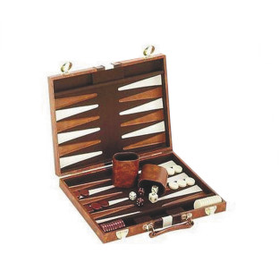 Backgammon in Case