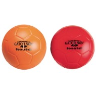 Gator Skin dodgeball set