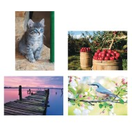 Thera-Jigsaw™ Foam Puzzles Set: Apple, Bluebird, Dock, and Kitten (Set of 4)