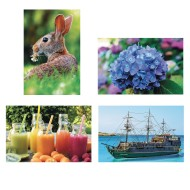 Thera-Jigsaw™ Foam Puzzles Set: Boat, Rabbit, Juice, and Hydrangea (Set of 4)