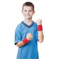Individual Color Wristband Set,  (Pack of 12)