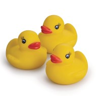 Classic Yellow Rubber Ducks (Pack of 12)