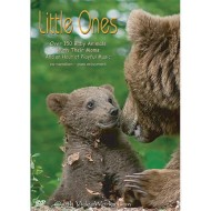 Little Ones DVD