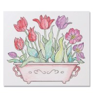 Paint Palette: Tulips (Pack of 24)