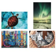 Thera-Jigstick™ Puzzle Set: Colorful Bike, Kittens, Northern Lights, and Sea Turtle (Set of 4)