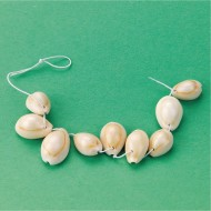 Faux Shell Beads