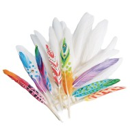 Color Splash!® Duck Quill Feathers, White
