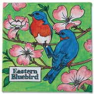 Eastern Bluebird Paintings (Pack of 12)