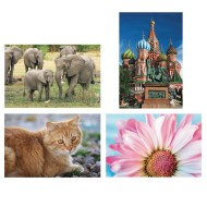Thera-Jigstick™ Puzzle Set: Tabby Cat, Elephants, Moscow Temple, and Pink Daisy (Set of 4)