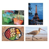 Thera-Jigstick™ Puzzle Set 5: Baskets, Beach Bird, Eiffel Tower, and Vegetables (Set of 4)