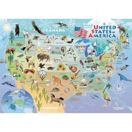 USA Map 35-Piece Tray Puzzle