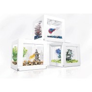 Biobubble Deco Cube Pack (Pack of 3)