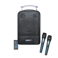 Portable PA System with Microphones