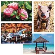 Thera-Jigsaw™ Foam Puzzles Set: Carousel Horse, Piglet, Pink Roses, and Beach Hut (Set of 4)