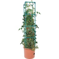 Heavy Duty Tomato Barrel with 4' Tower