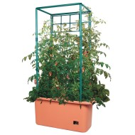 Heavy Duty Tomato Trellis Garden on Wheels