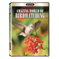 Amazing World of Birdwatching DVD