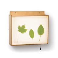 Wall Mounted Light Box