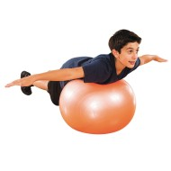 Exercise and Therapy Ball