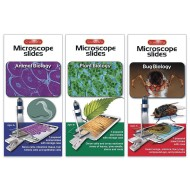Prepared Microscope Slides - Animals, Bugs, and Plants