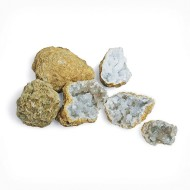 Break Your Own Geodes (Pack of 10)