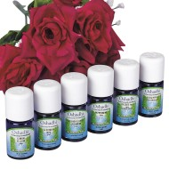 First Aid Aromatherapy (Set of 6)
