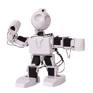 JD Humanoid Robot - Image 1 of 1
