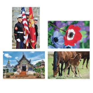 Thera-Jigsaw™ Foam Puzzles Set: Temple, Horses, Military, and Poppy (Set of 4) - Image 1 of 2