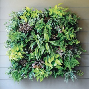 "14"" Living Wall Planter - Image 1 of 4"