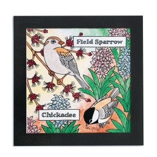 Birdwatcher Portraits Craft Kit (Pack of 24) - Image 1 of 2