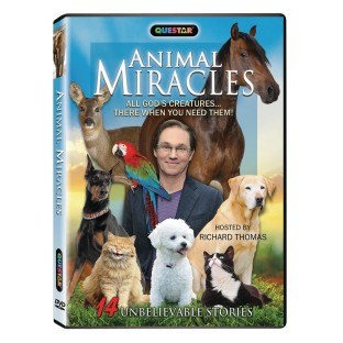 Animal Miracles DVD - Image 1 of 1