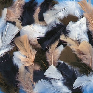 Color Splash!® Natural Fluff Feather Assortment - Image 1 of 1