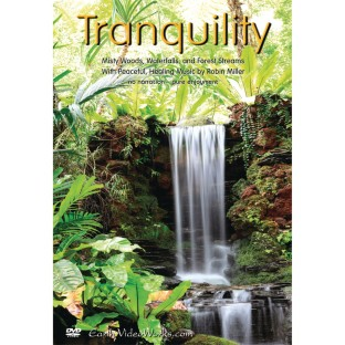 Tranquility DVD - Image 1 of 2