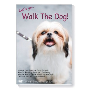Walk the Dog DVD - Image 1 of 2