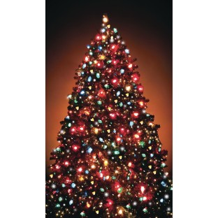 Christmas Tree WOWindow Poster® - Image 1 of 1