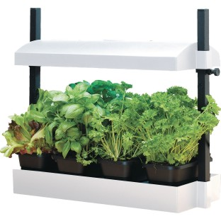 Micro Grow Light Garden - Image 1 of 1