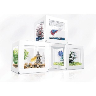 Biobubble Deco Cube Pack (Pack of 3) - Image 1 of 3
