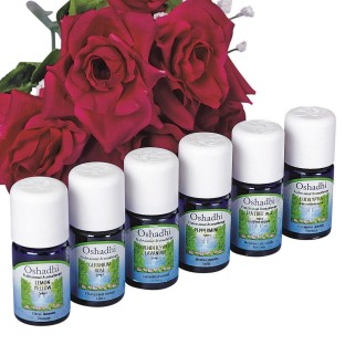 First Aid Aromatherapy - Image 1 of 1