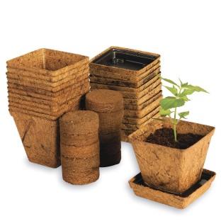 Live planting kit