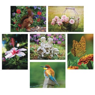 S&S® Aquapaintings™ In The Garden (Pack of 12) - Image 1 of 3