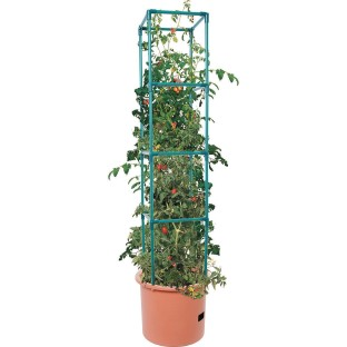 Heavy Duty Tomato Barrel with 4' Tower - Image 1 of 2