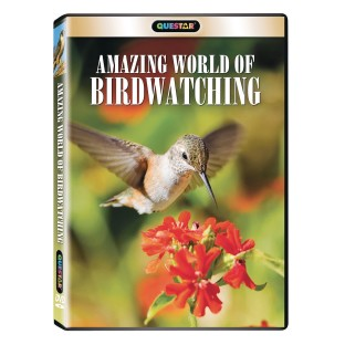 Amazing World of Birdwatching DVD - Image 1 of 1