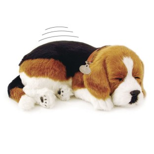 Perfect Petzzz Beagle Dog - Image 1 of 1