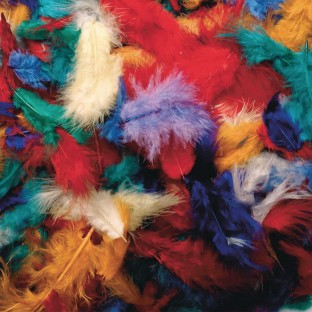 Color Splash!® Mini Fluff Feather Assortment - Image 1 of 1